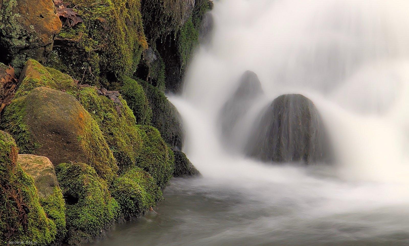 Woda jak to woda, płynie i szumi...