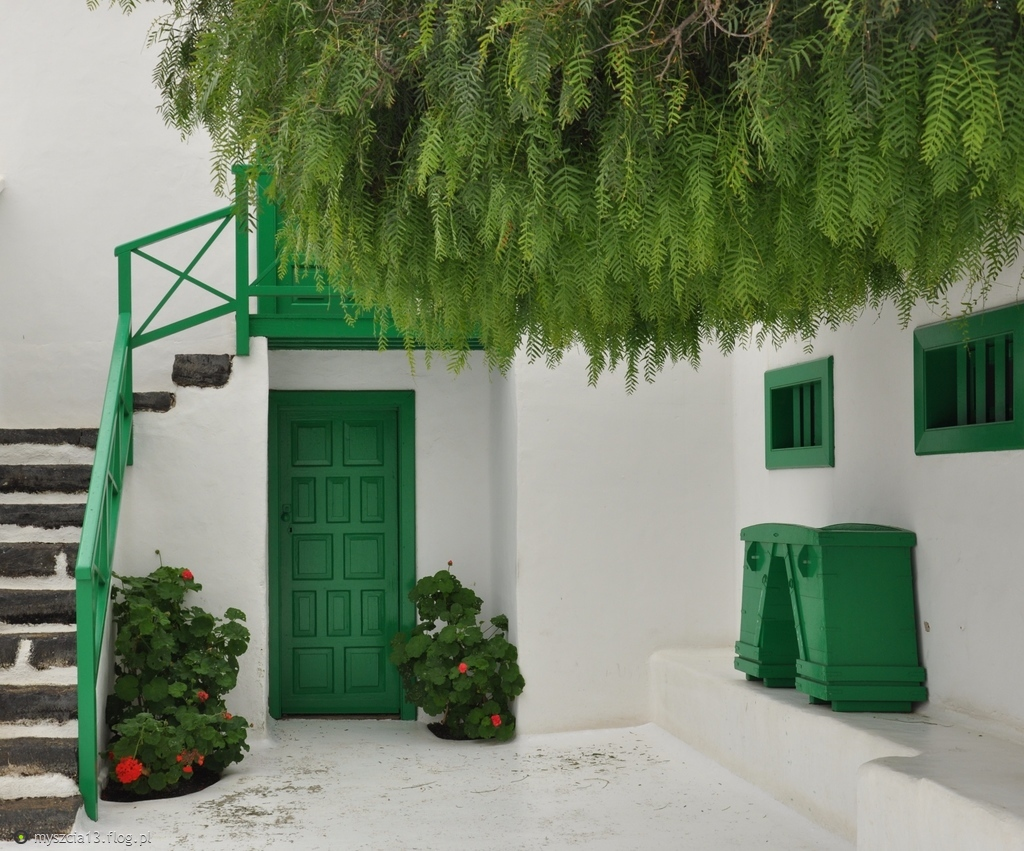 Harmonia bieli i zieleni:)