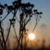Wschód słońca :: Jeszcze raz wrzucam moje <br />zdjęcie bo nie wiadomo dl<br />aczego zostało usunięte z<br /> floga :(