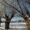 Dziś przychodzę do Was z <br />moimi zimowymi drogami...