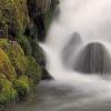 Woda jak to woda, płynie <br />i szumi... ::