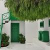 Harmonia bieli i zieleni:<br />) :: Lanzarote