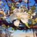 Wiosna, ach to ty :: Już niedługo. :) Uwielbia<br />m wiosnę.